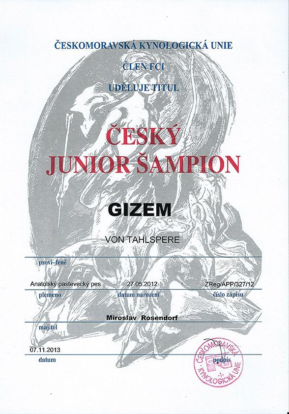 Gizem_tiul